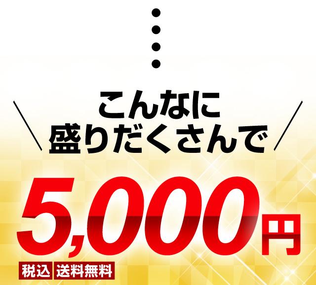 こんなに盛りだくさんで5,000円ポッキリ!!