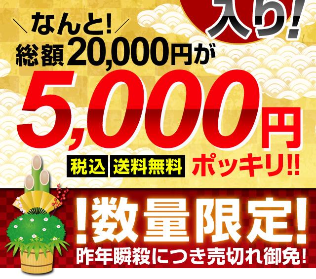 なんと、総額20,000円が税・送料込5,000円ポッキリ!
