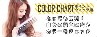 ポイントウィッグ用カラーチャート 1円