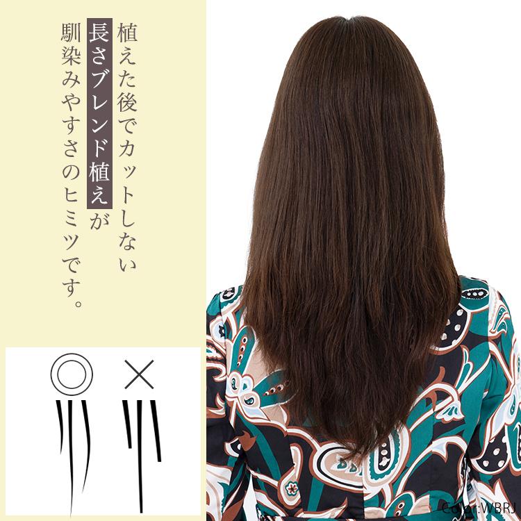 植えた後でカットしない「長さブレンド植え」が、アクアドールのヘアピースの馴染みやすさのヒミツです。