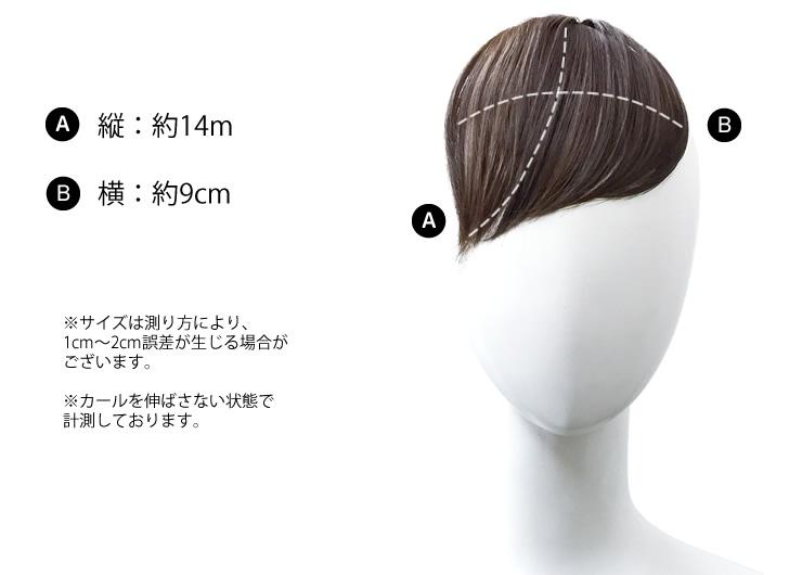 シースルーバングス前髪ウィッグ[wgt037]