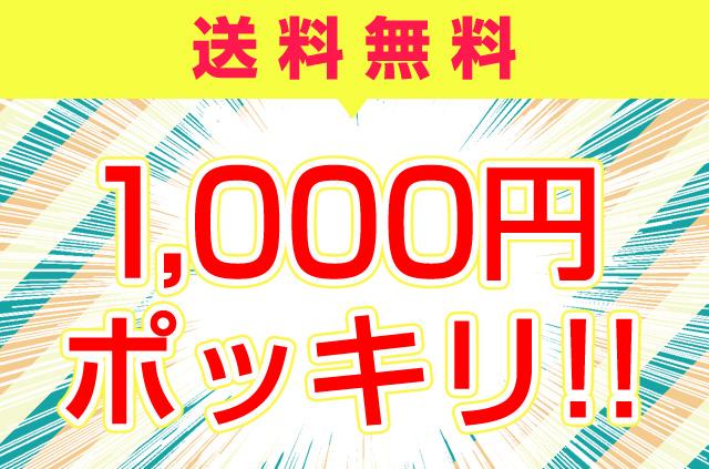 1000円ポッキリ